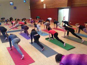 federation yoga